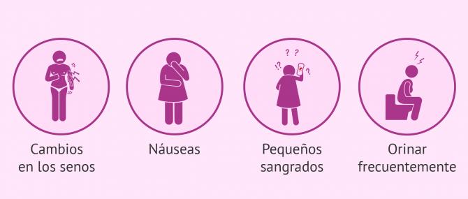 Imagen: Síntomas frecuentes tras la transferencia embrionaria