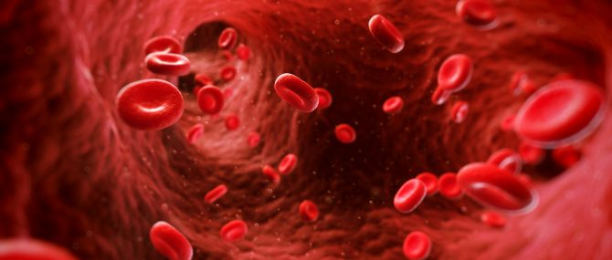 Imagen: Causas de la anemia