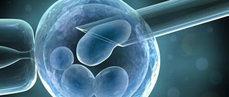 Clínica MD reproducción ICSI
