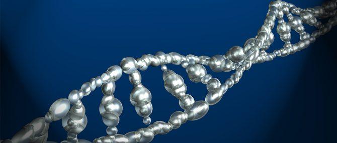 Una nueva técnica «Biochips de ADN» detecta las alteraciones genéticas en el esperma relacionadas con la infertilidad