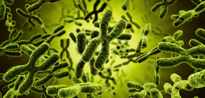 La azoospermia se relaciona con la propensión a cáncer