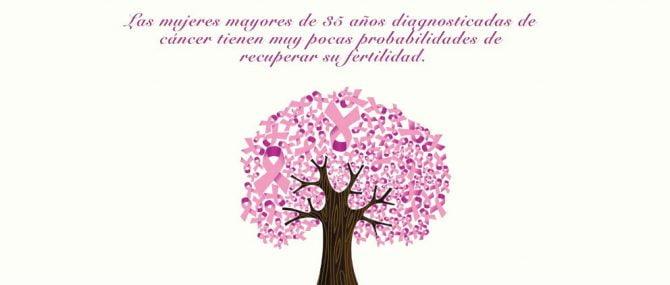 19 de octubre, Día Internacional contra el Cáncer de Mama