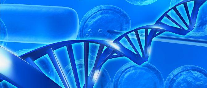 La distrofia muscular facioescapulohumeral y el embarazo