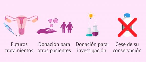 Posibles destinos de los embriones sobrantes de FIV