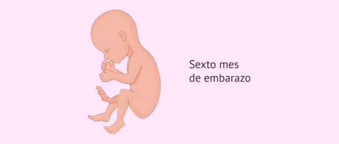 Imagen: 6 meses