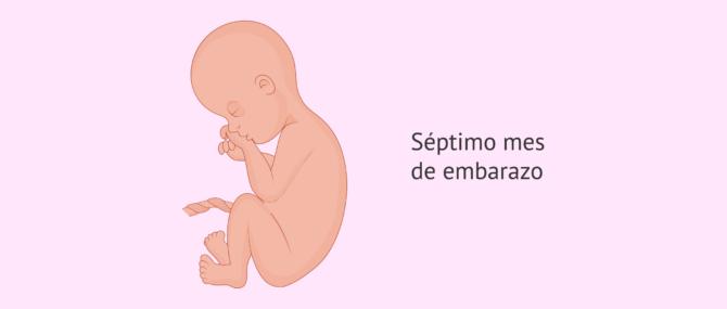 Imagen: 7 meses