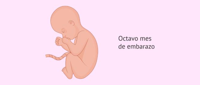 Imagen: 8 meses