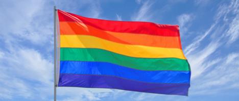 Maternidad compartida en parejas homosexuales