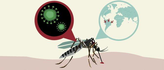 Imagen: Virus del Zika