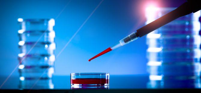 Obtención de gametos a partir de células somáticas
