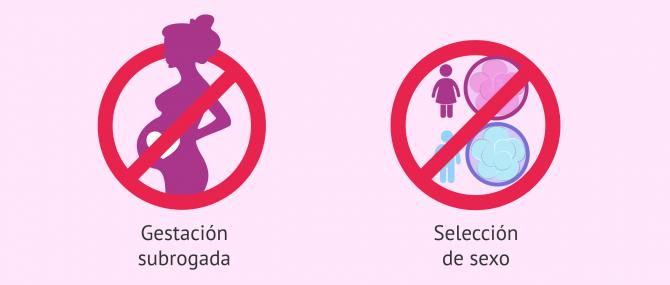 Imagen: Legislación en reproducción asistida