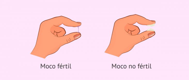 Imagen: Problemas con el moco uterino