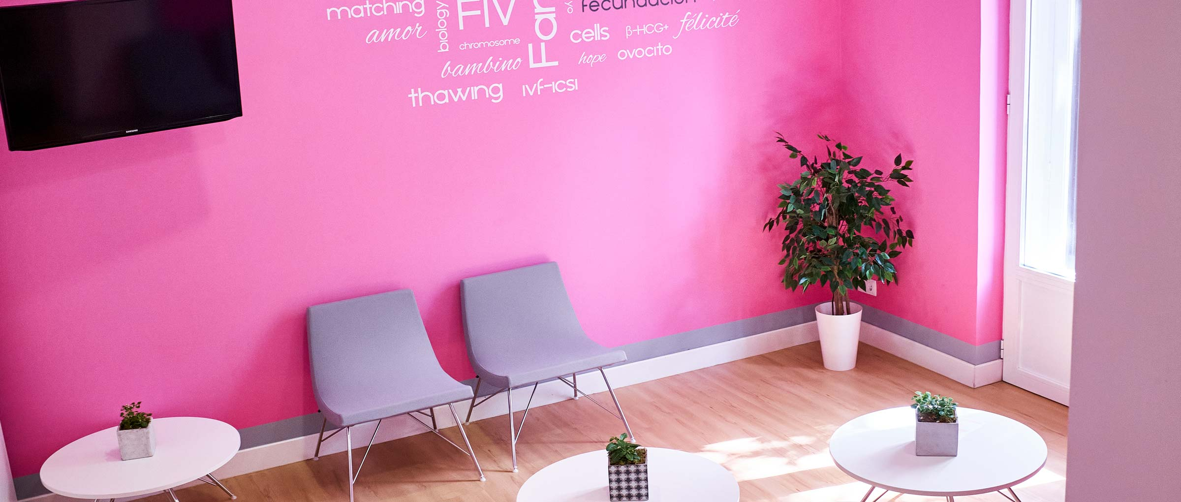 Sala de espera de Love Fertility