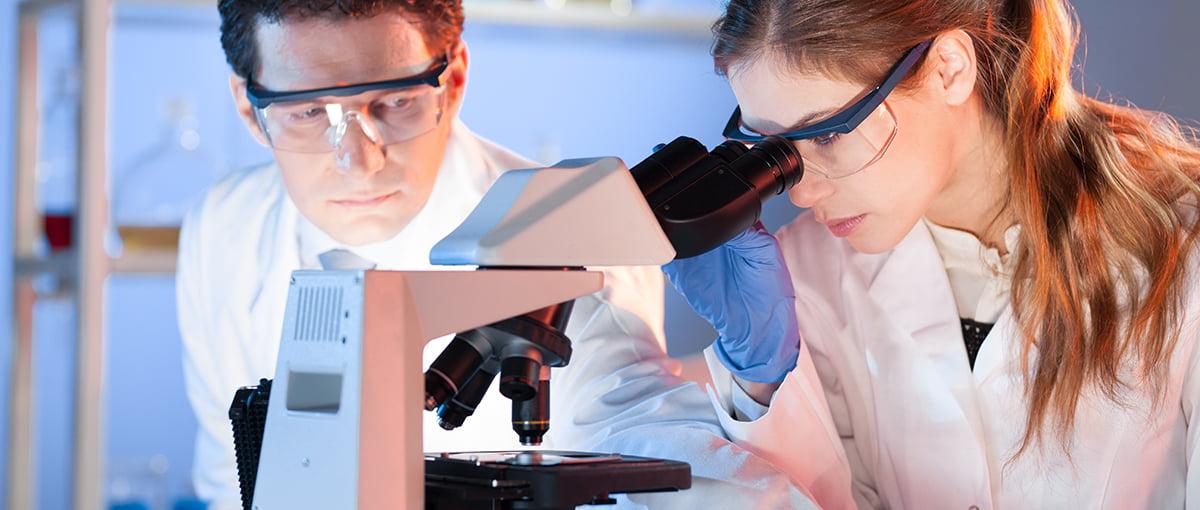 Objetividad en la selección embrionaria