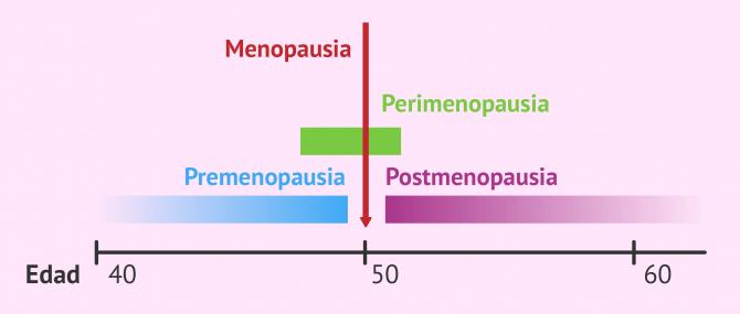 Imagen: Hacia la menopausia