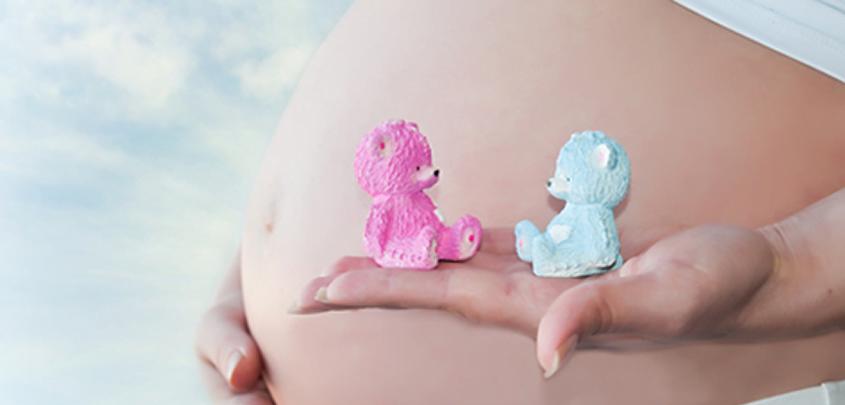 Cómo se puede seleccionar el sexo del futuro hijo