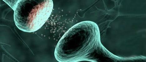 Enfermedades autoinmunes y embarazo: Miastenia Gravis