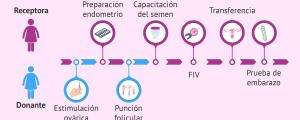 Sincronización de la paciente y la donante de ovocitos