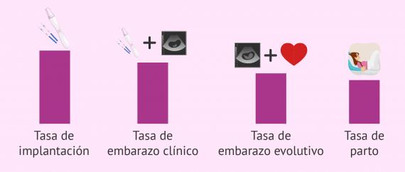 Imagen: Técnicas y tasas de embarazo