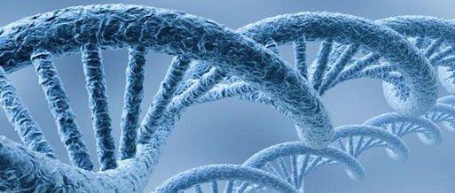Alteraciones en la cadena de DNA