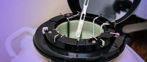 Imagen: Vitrificación en centro de reproducción Mencía