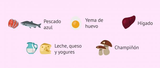 Imagen: Alimentos ricos en vitamina D