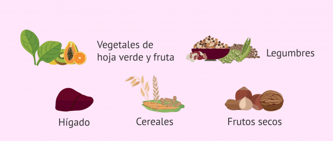 Imagen: Alimentos ricos en ácido fólico