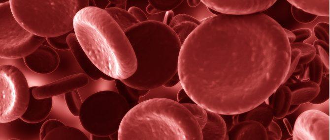 Trombofilias y complicaciones en el embarazo