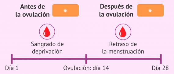 Alteraciones del ciclo menstrual con la postday