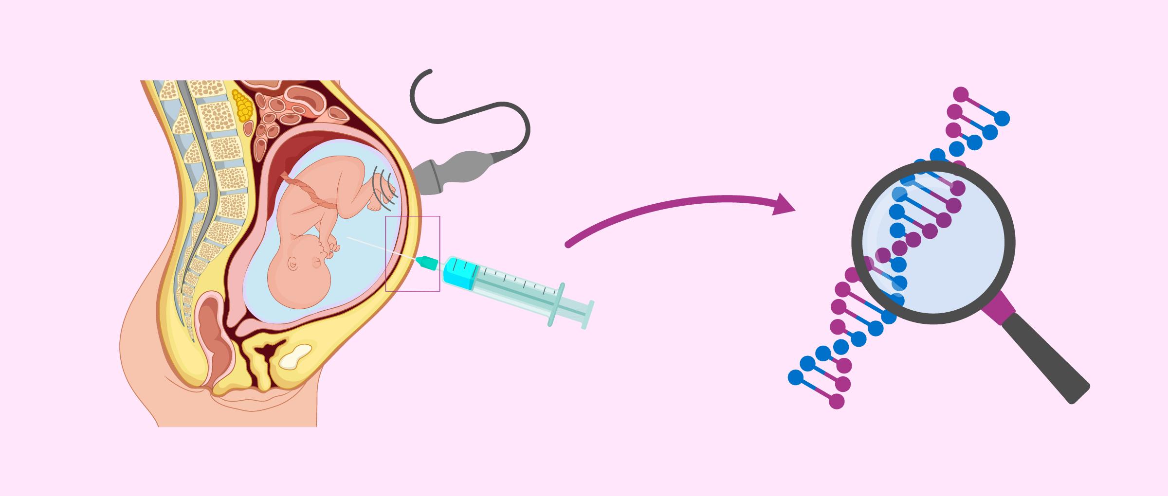4 meses de embarazo: síntomas en la madre y desarrollo del bebé