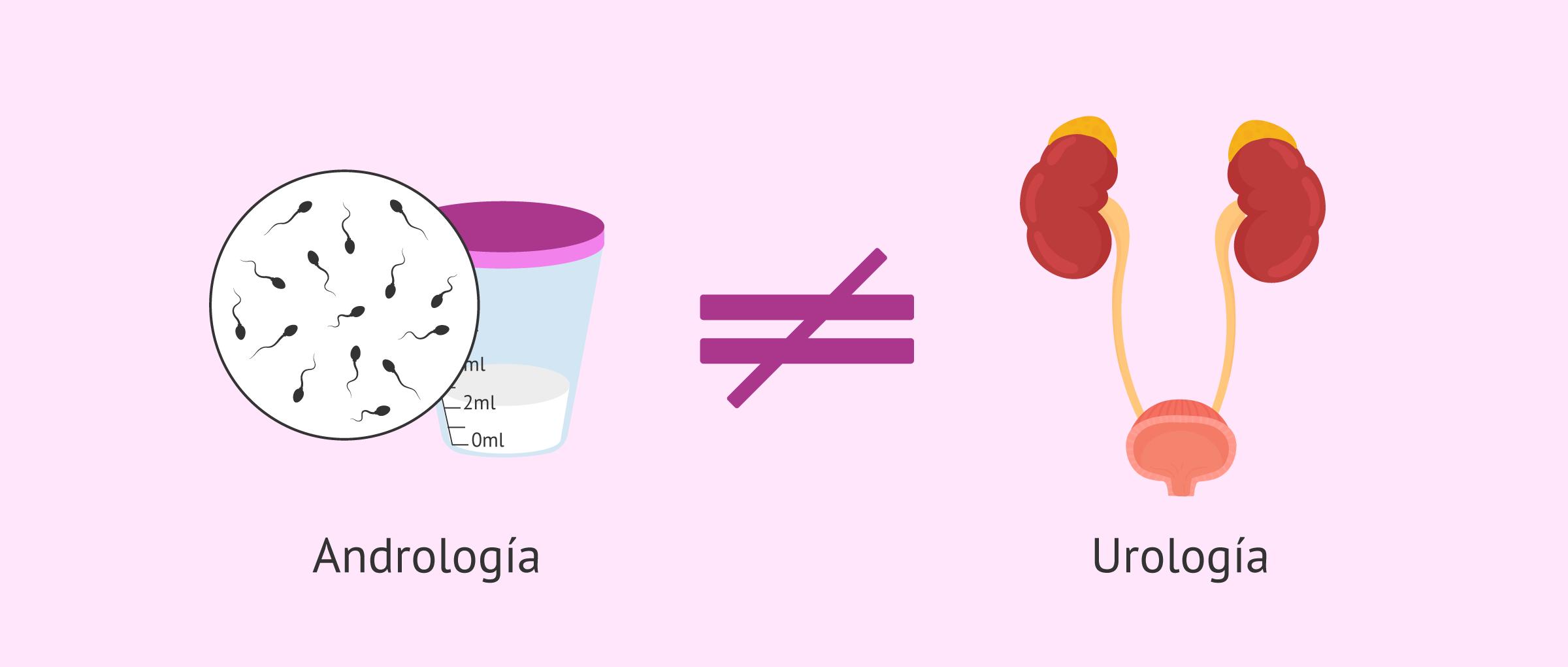 andrologia-diferente-urologia