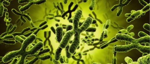 Alteraciones en los cromosomas