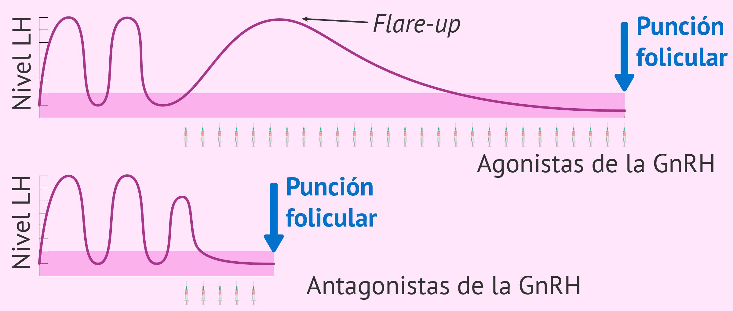 Comparación del efecto de los agonistas y los antagonistas
