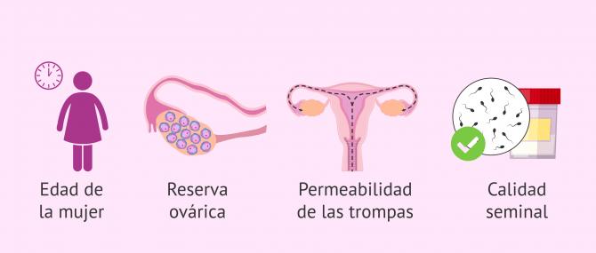 Imagen: Aspectos para la elección del tratamiento reproductivo