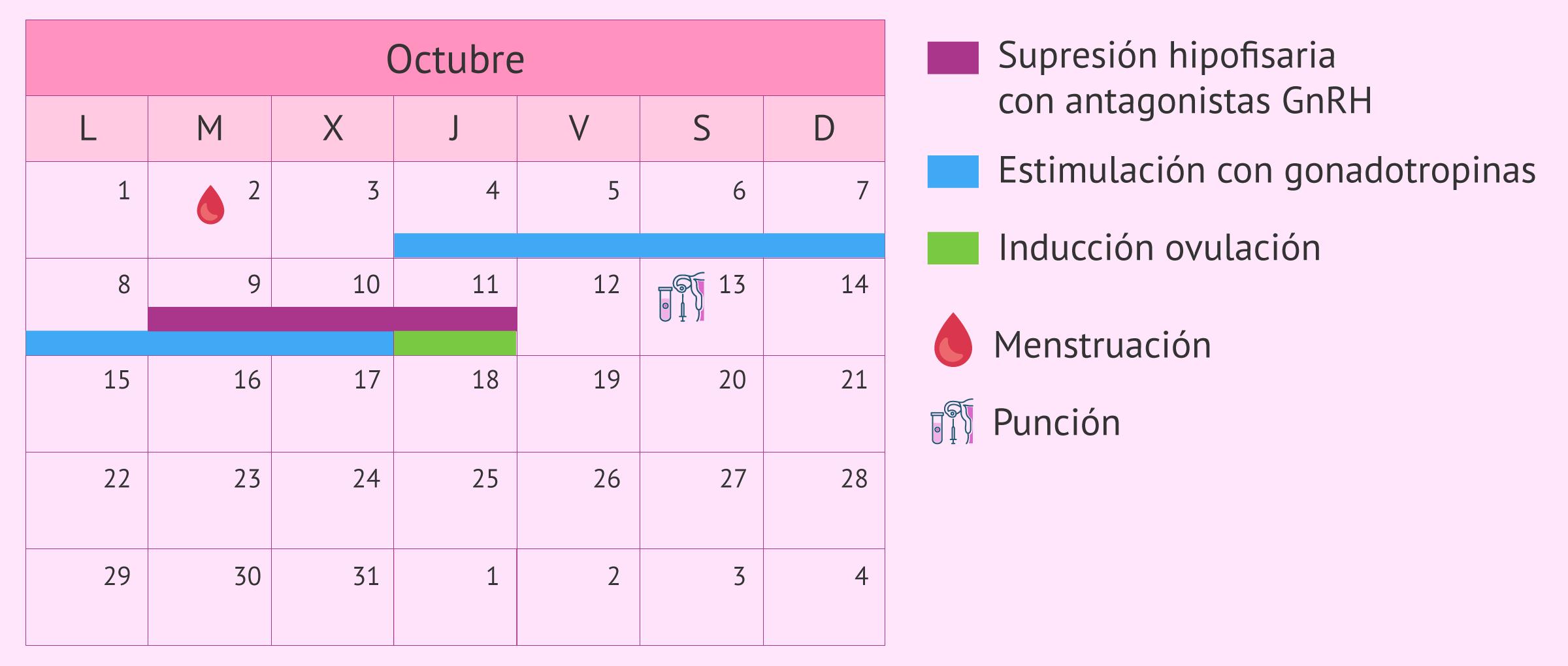 Calendario para un protocolo de estimulación corto
