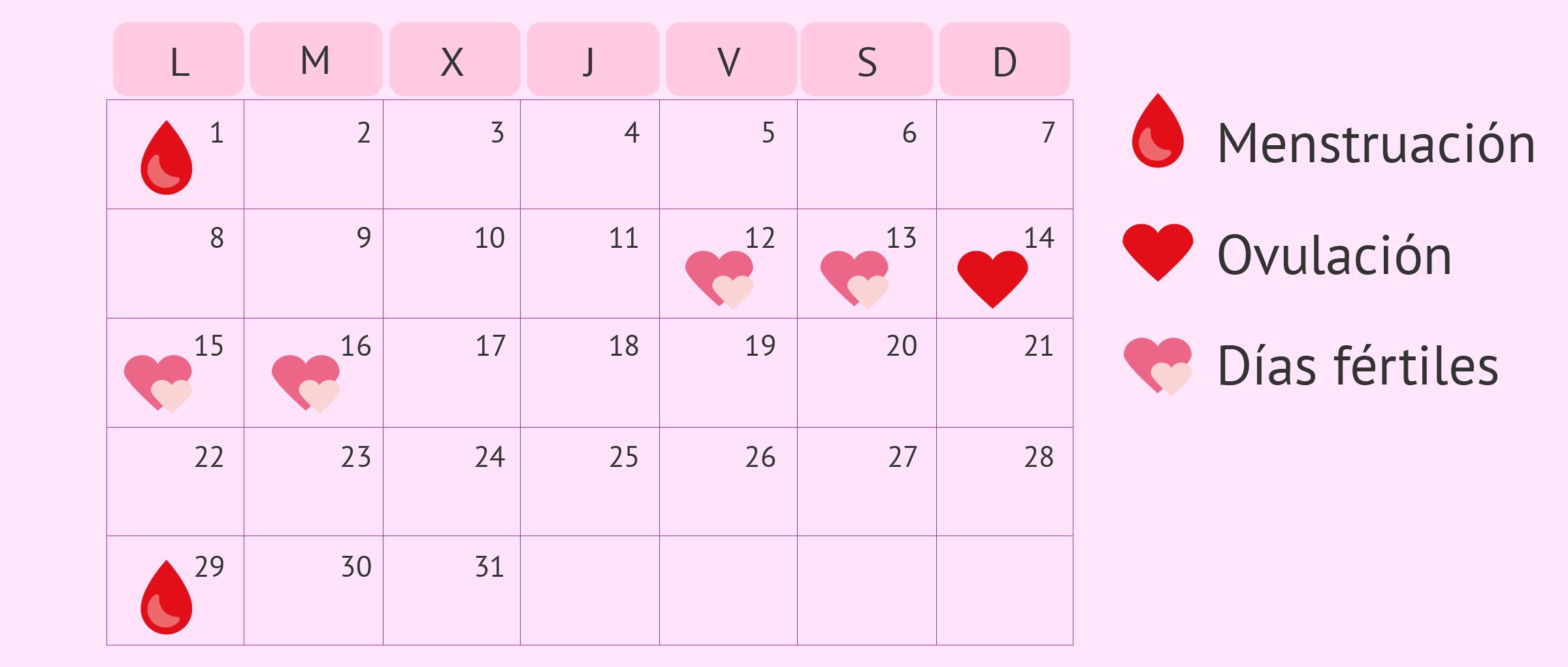 Dias Fertiles Mujer Calendario.Calendario De Dias Fertiles