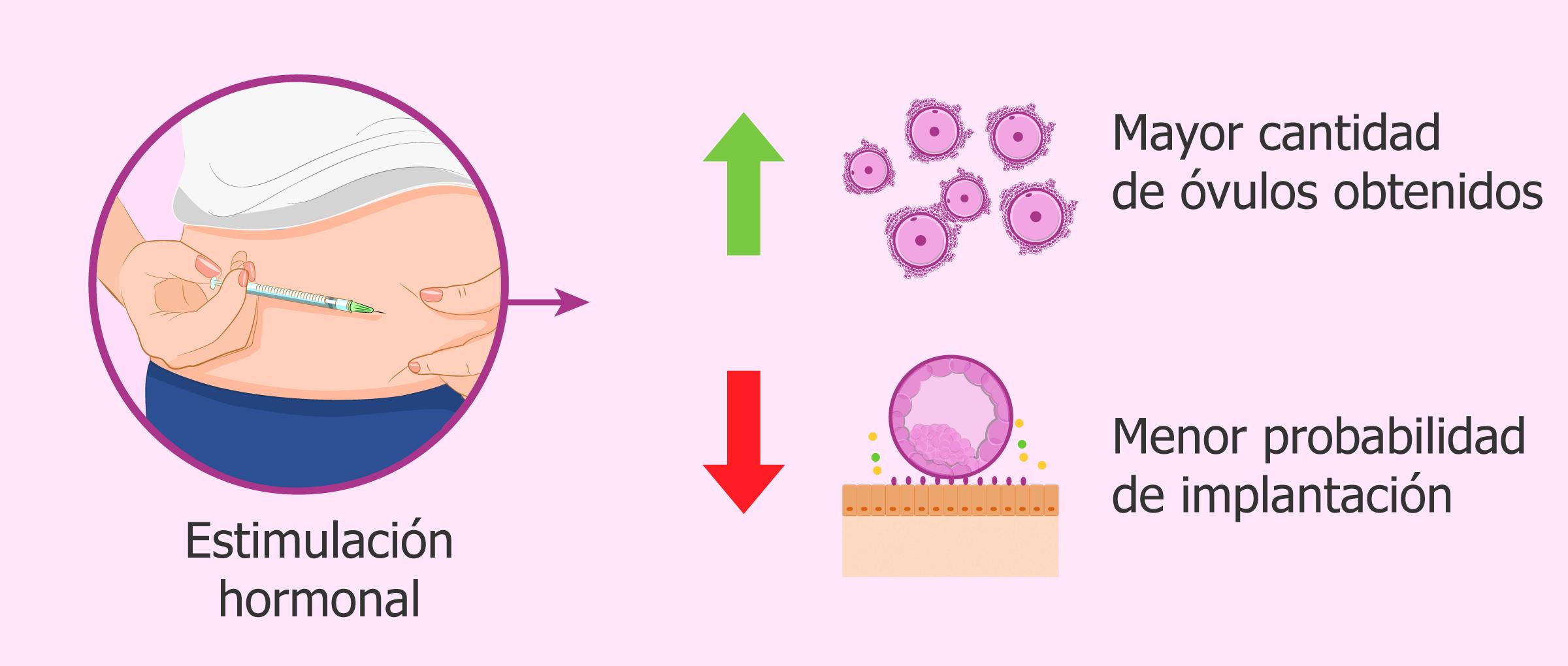 Calidad del endometrio