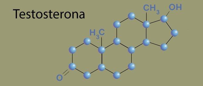 Imagen: Cambios bioquímicos de testosterona