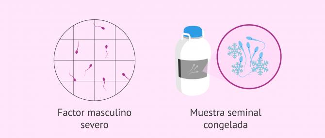 Imagen: Casos no recomendados para el Fertile Chip