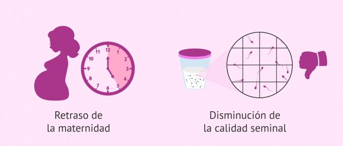 Imagen: Causas de infertilidad en España