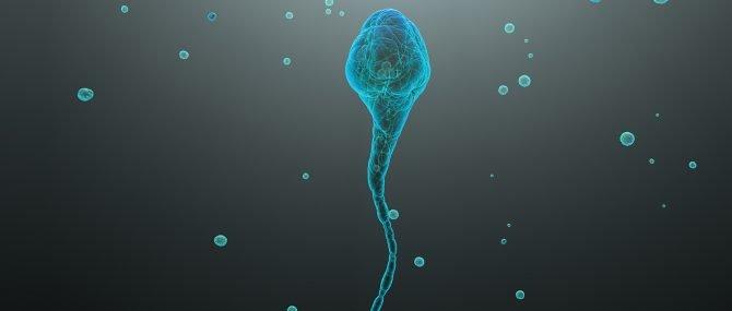 Imagen: Origen de la infertilidad masculina