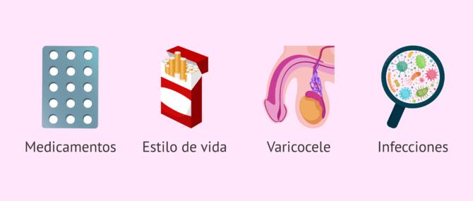 Imagen: Causas de la oligoastenoteratozoospermia