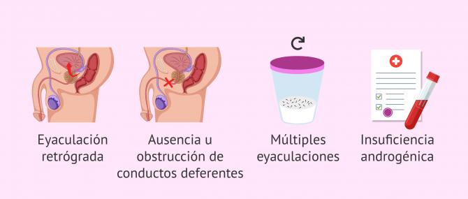 Imagen: ¿Cuáles son las causas de la hipospermia?