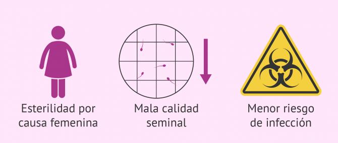 Imagen: Motivos para recurrir a la fecundación in vitro.