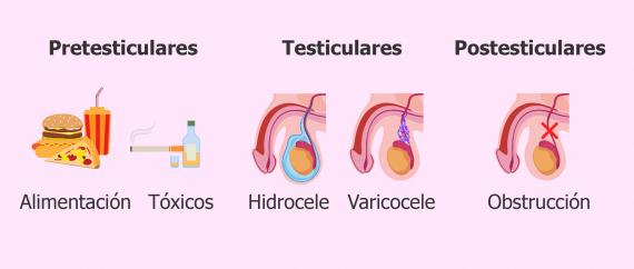 Imagen: Causas que provocan oligospermia en el varón