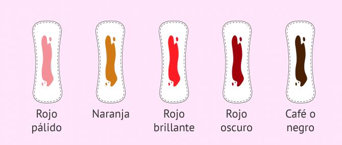 Imagen: Color del sangrado de la menstruación