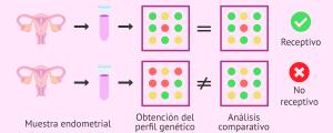 Comparativa de los genes que se expresan en el endometrio