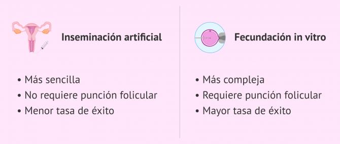 Imagen: Diferencias entre IA y FIV