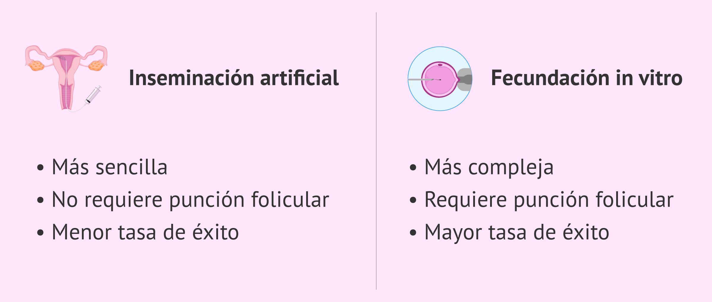 Diferencias entre IA y FIV