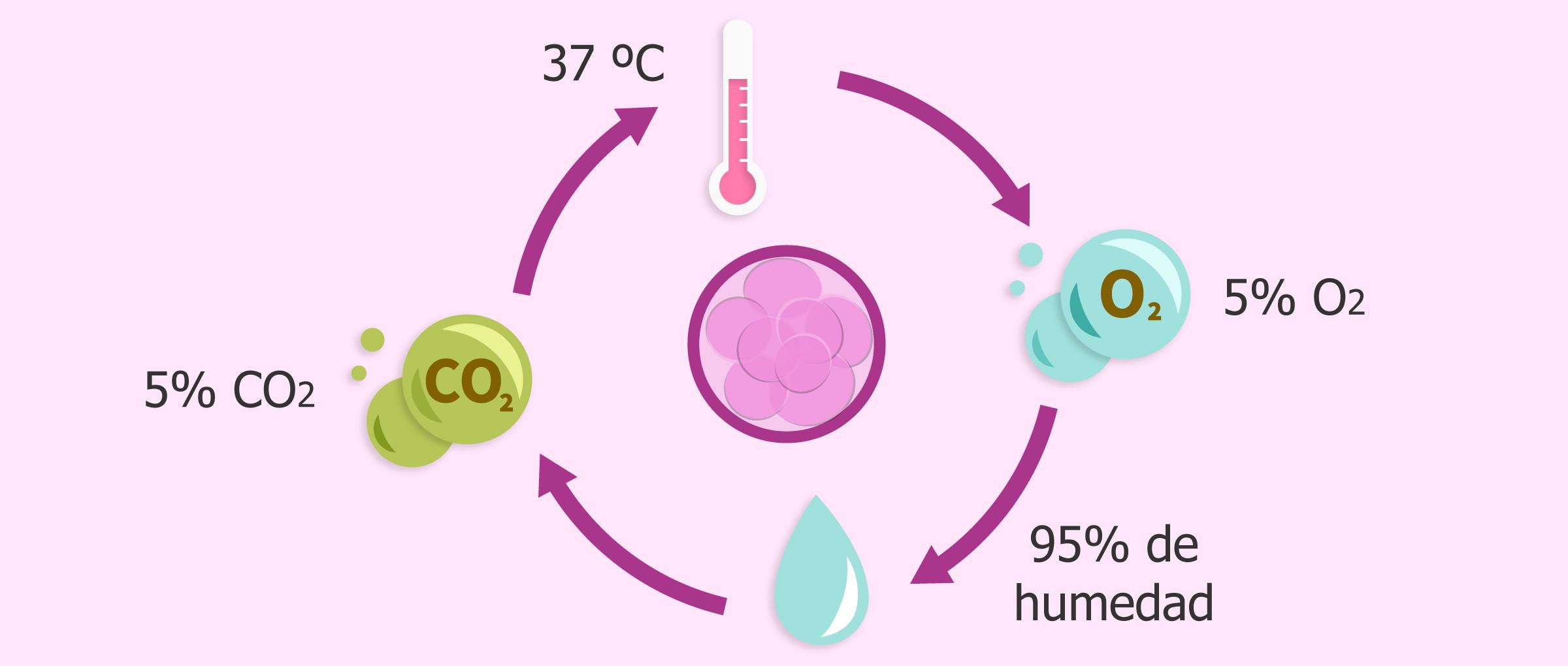 Condiciones en el laboratorio